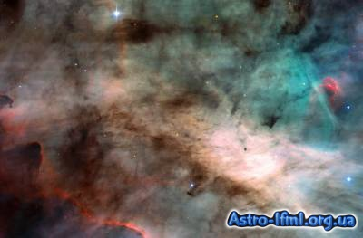 The Omega Nebula - Hotbed of Star Formation