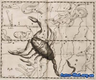 Скорпіон (Scorpius)