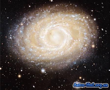 NGC 3351