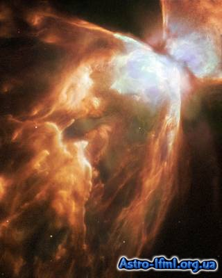 A Dying Star Shrouded by a Blanket of Hailstones Forms the Bug Nebula
